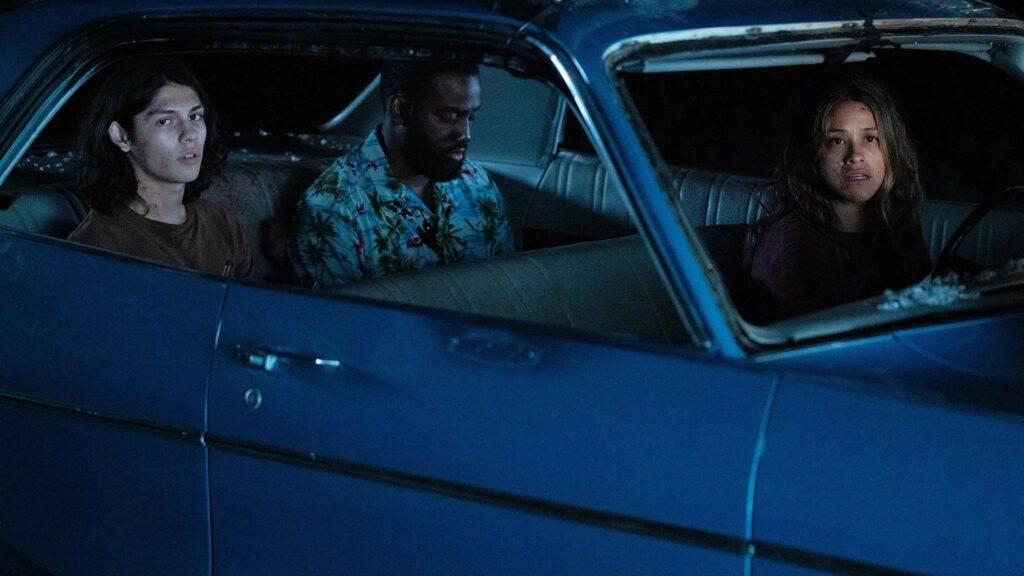 A woman, a man and a teen boy in a car at night